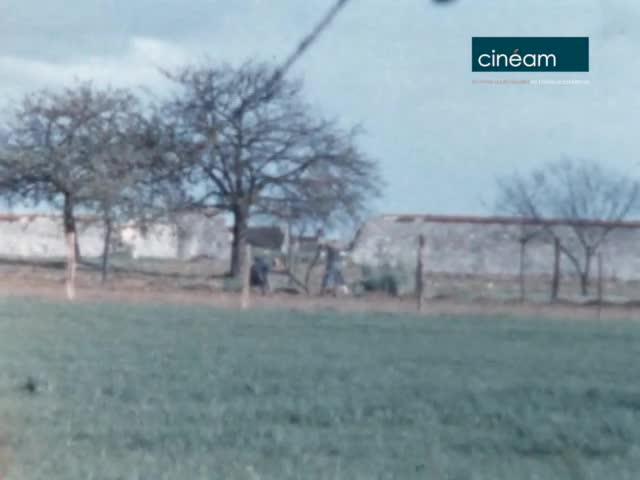 Scènes de campagne à Vaudoy-en-Brie (77)